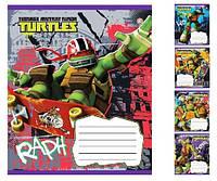 """Тетрадь школьная 12 листов клетка """"Mutant Ninja Turtles.Drive-15 """" Зошит України"""