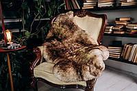 Шкура овечья с коричневыми кончиками, короткошерстная, размер 110х70