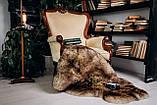 Овеча Шкура з коричневими кінчиками, розмір 120х80, фото 3