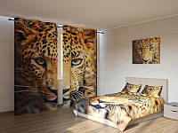Фотокомплект Леопард Код: ART 4137
