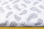 Отрез ткани с летящими перьями серого цвета на белом фоне, №2379, фото 3
