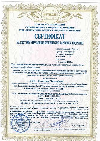 Система ХАССП (стандарт ДСТУ ISO 22000) для контролю безпеки харчових продуктів, фото 2