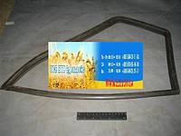 Уплотнитель стекла неподвижного ГАЗ правый (пр-во ЯзРТИ) 3302-6103122-03