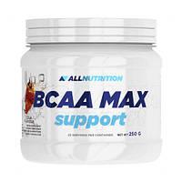 AllNutrition BCAA Max (250 г) аллнутришн бцаа макс orange