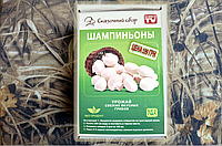 Чудо грибница, готовый засеянный мицелий для выращивания грибов дома (9400781)