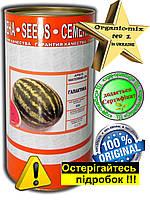 Семена, арбуз Галактика (Турция), средне-ранний, 500 грамм банка, обработанные Metalaxyl