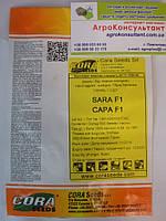 Насіння баклажана Сара F1 (Кора сідс ) 500 насінин — ранній (58-62 дні), сортотип Клорінда