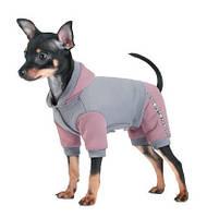 Костюм для собак Pet Fashion Рикки серый, M