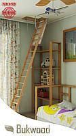 Чердачная лестница  Bukwood Compact Long 120x60, 120x70, 120x80, 120x90, 130x60, 130x70, 130x80, 130x90