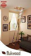 Чердачная лестница  Bukwood Compact Metal Mini 90x60, 90x70, 90x80, 90x90, 100x60, 100x70, 100x80, 100x90