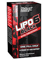 Жиросжигатель Lipo-6 Black Ultra Concentrate 60 капсул (4384301073)