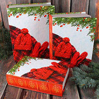 Коробка Новогодняя книга №1 малая (23*16.5*6 см)