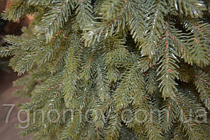 Елка искусственная литая Лесная Маланка 1.8, фото 3