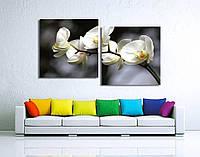 """Модульная картина от 100х55 см до 200х109 см на холсте """"Орхидея на природе"""". От производителя"""