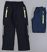 Лыжные штаны утепленные для мальчиков F&D оптом , 104-134 pp.