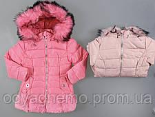 Куртка утепленная для девочек Nature оптом, 1-6 лет. Артикул: RYG5365