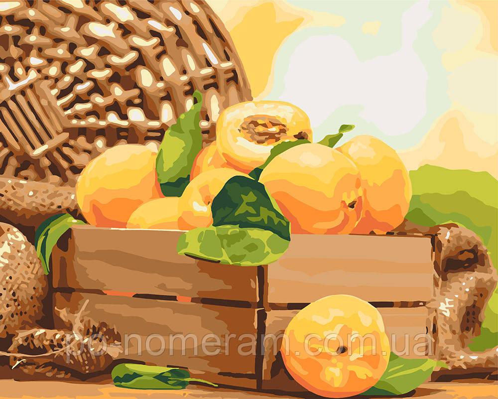 Раскраска для взрослых Идейка Золотистый абрикос (KHO5565 ...