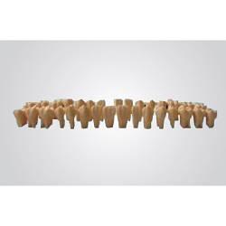 Сменные зубы с отверстием для зубных моделей (28 шт.)