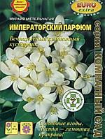 Семена Мурайя Императорский Парфюм  7 сем. Аэлита