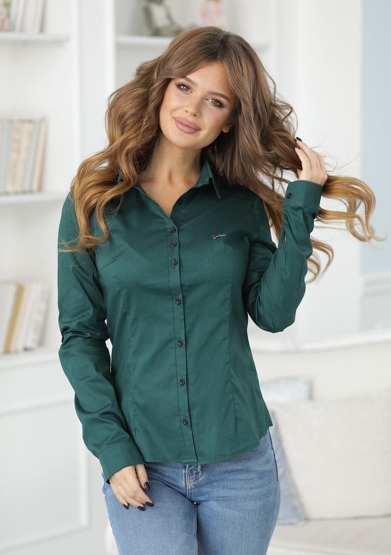 Женская классическая блузка коттон длинный рукав размер: 42, 44, 46, 48