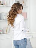 Женская классическая блузка коттон длинный рукав размер: 42, 44, 46, 48, фото 4