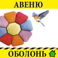 """""""Авеню"""", Киев - Оболонь"""