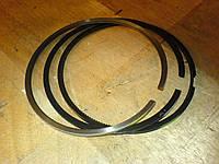 3919918 Поршневые кольца Cummins 6CT ISC QSC