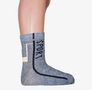 Подростковые носки СПОРТ р.33-36 (D397/33-36) | 12 пар, фото 2