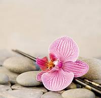 """Алмазная вышивка """"Цветок орхидеи"""""""