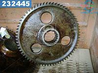⭐⭐⭐⭐⭐ Шестерня ведомая (производство  МЗШ)  50-2407122