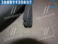 ⭐⭐⭐⭐⭐ Уплотнение лобового стекла кабины ЮМЗ  (бухта 28м)  (производство  Рось-гума)  45Т-6700011