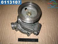 ⭐⭐⭐⭐⭐ Насос водяной (производство  Украина)  740.1307010-02