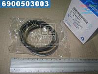 ⭐⭐⭐⭐⭐ Кольца поршневые комплект (производство  GM)  93742963