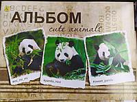 Альбом для рисования 12 листов Панда
