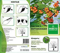 "Феромонная ловушка ""Лепесток"" на вишневую муху (Rhagoletis cerasi)"