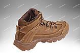 Военные ботинки демисезонные / армейская, тактическая обувь ТИТАН Gen.II (coyote), фото 6