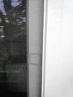 Антимоскитные сетки на окна в Киеве