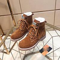 Ботинки женские Ugg (Угги), фото 1