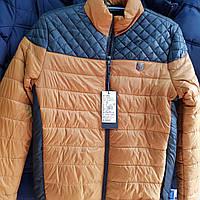 Куртка мужская оптом, весенняя на тонком утеплителе