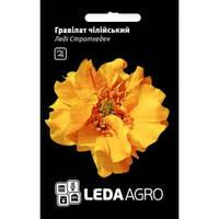 Семена Гравилат чилийский Леди Стратхеден 0,1 грамма Hem Zaden LedaAgro