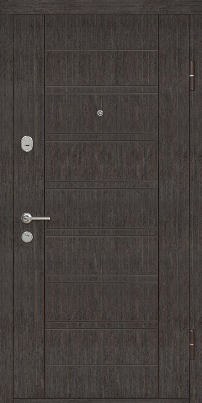 Дверь входная Омис Лагуна ТМ Riccardi