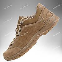 Тактические кроссовки / демисезонная военная обувь Trooper DESERT (coyote), фото 1