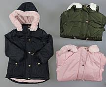 Куртка утепленная для девочек Nature , 2-8 лет. Артикул: RSG5523 {есть:4 года}
