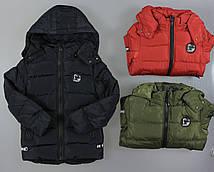 Куртка утепленная для мальчиков Nature ,2/3-8/9 лет. Артикул: RSB5320 {есть:2/3 года}