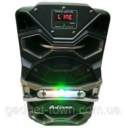Колонка на аккумуляторе с микрофоном Ailiang UF-8008 AK-DT/100W (USB/Bluetooth/FM) акустическая система