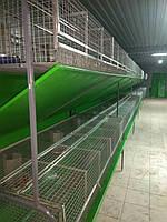 Відбійники для видалення гною на промислові клітки для кроликів