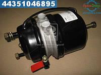 ⭐⭐⭐⭐⭐ Камера Торм Тип 24/24 D/P дисковый тормоз  (RIDER)  RD 74.00.53