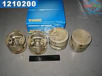 ⭐⭐⭐⭐⭐ Поршень цилиндра УМЗ-421 ЕВРО-4 d=100.5 мм 4шт. в упаковке (производство  УМЗ)  42164.1004017