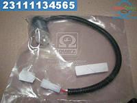 ⭐⭐⭐⭐⭐ Электромагнитний клапан ТНВД  ММЗ Д-245.9Е2, Д-245.5S2, Д-260.4С2  (12 В) (Motorpal)  37098274