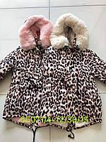 Куртки  на меху для девочек оптом, Seagull, размеры 4-12 лет, арт. CSG-65071, фото 1